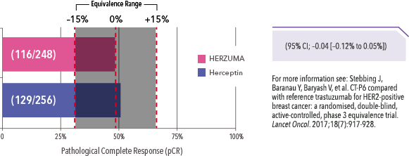 Bar graph showing pathological complete response (pCR) results from therapeutic equivalence study